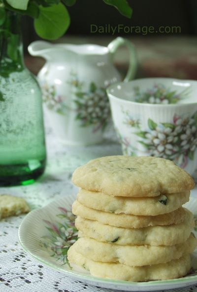 Lemon Basil Shortbread Cookies, DailyForage.com