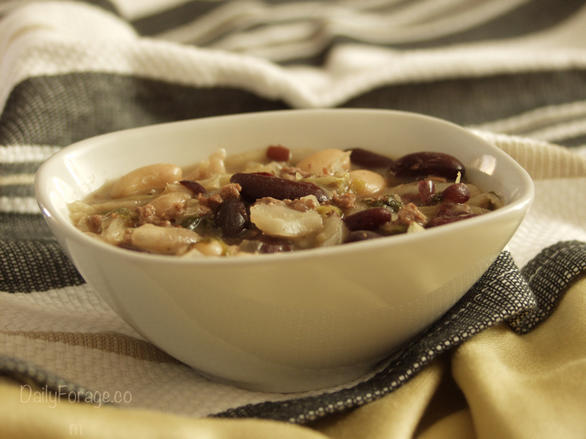 Gluten-free Dairy-free Beef, Bean, and Cabbage Soup