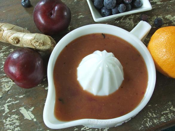 Raw Orange Plum Blueberry Juice by DailyForage.com