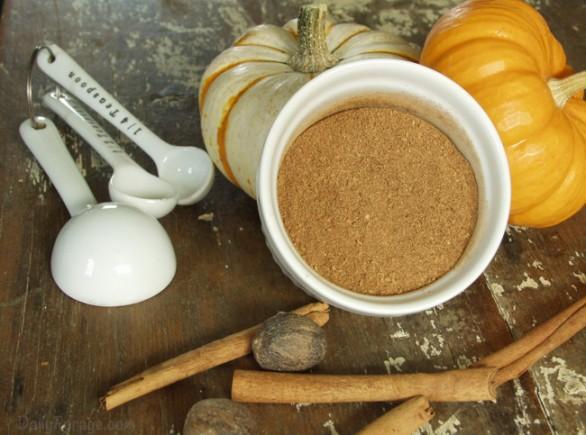 Homemade Gluten-free Pumpkin Pie Spice Recipe by DailyForage.com