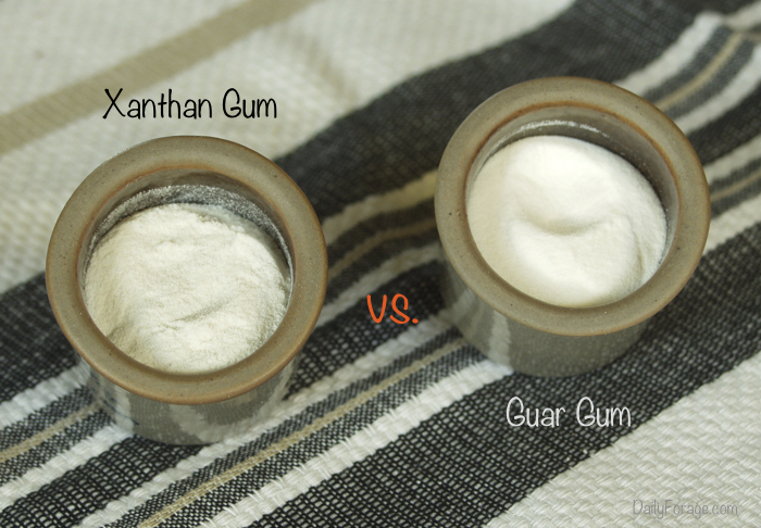 Guar and xanthan gum