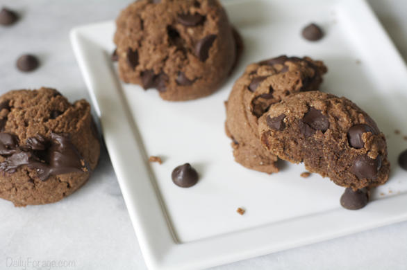 Gluten-free, Dairy-free, Oat-free Double Chocolate Chip Cookies