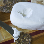 Homemade Dairy-free Coconut Milk Cream Cheese by DailyForage.com