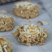 Oatmeal Breakfast Cookies (Power Pucks) GFDFEF