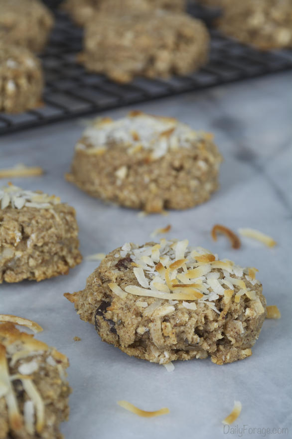 Gluten-free, Dairy-free Oatmeal Breakfast Cookies (Power Pucks)