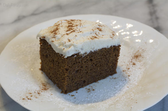 Gluten, Dairy, Soy, Egg, Nut Free Soft Gingerbread