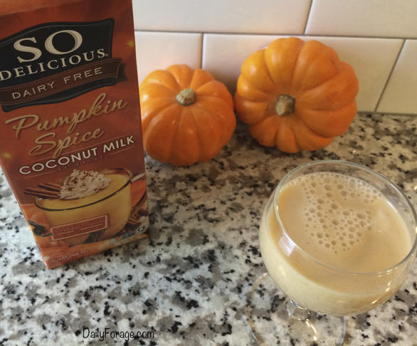 So Delicious Dairy-Free Pumpkin Spice Coconut Milk Product Review by DailyForage.com