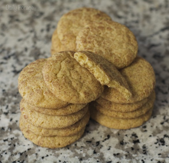 Gluten-free Dairy-free Cinnamon Snickerdoodles Cookies