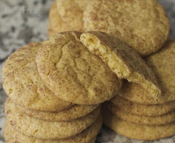 Cinnamon Sugar Snickerdoodles Cookies, free of gluten, dairy, soy, peanuts
