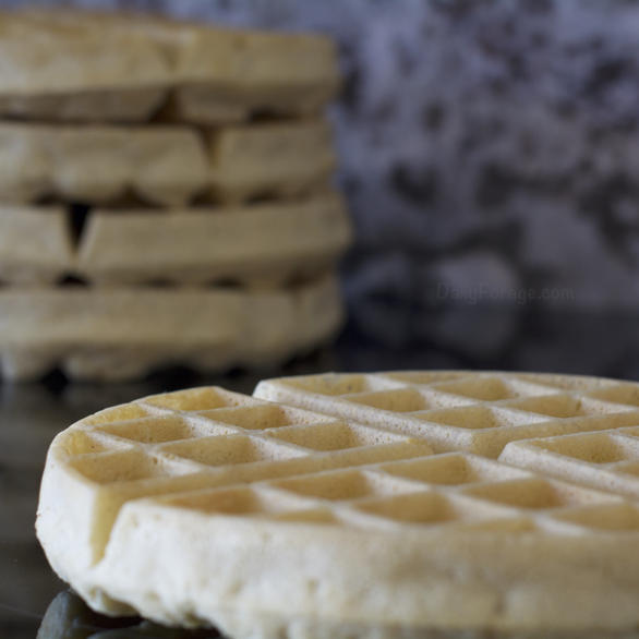 Perfect Single Flour Gluten & Dairy Free Waffles by DailyForage.com