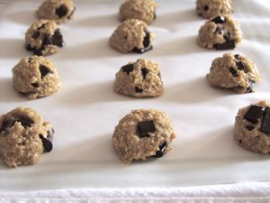 Chocolate Chip Cookies GFDF Raw, recipe:photo by Daily Forage