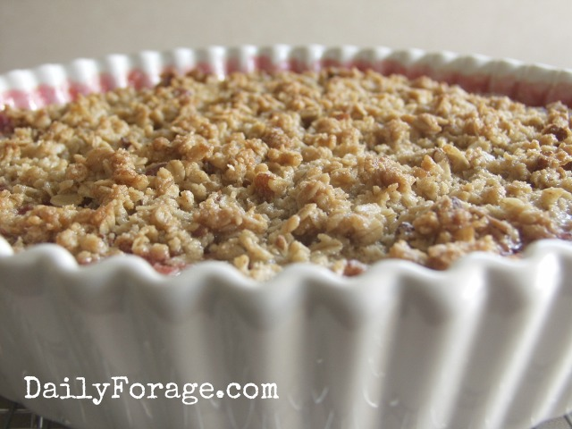 ... with Oatmeal Pecan Crumble Topping | Daily Forage - Gluten Free