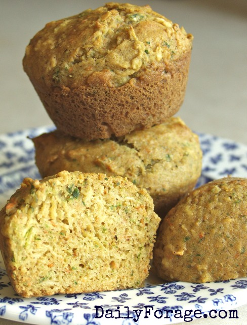 Fortified Applesauce Spice Muffins md 2 pic