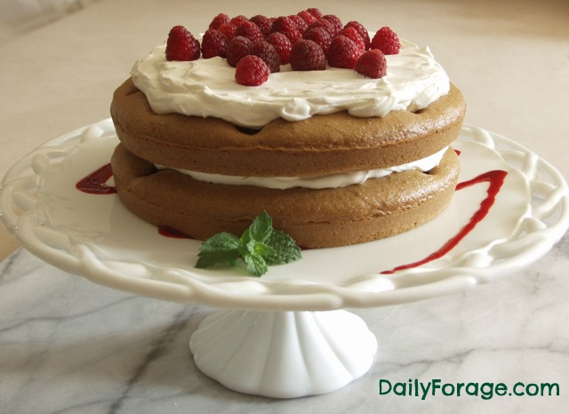 Gluten Free, Dairy Free Raspberry Polka Dot Cake with Whipped Cream md pic