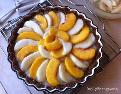 Peach & Pear Custard Tart Fruit Layer md pic
