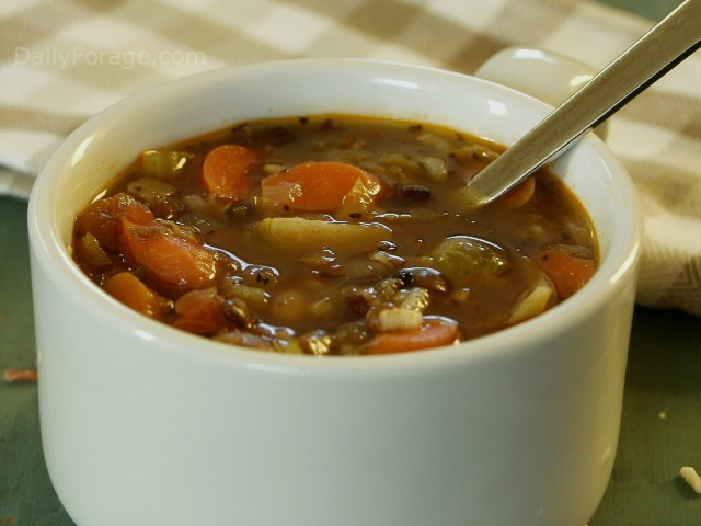 Minestrone Wild Rice Soup GFDF