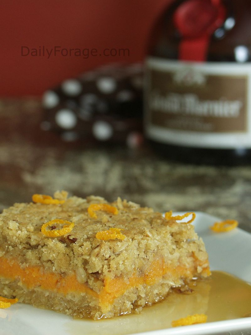 Apricot Sweet Potato Bars GFDF, Daily Forage photo