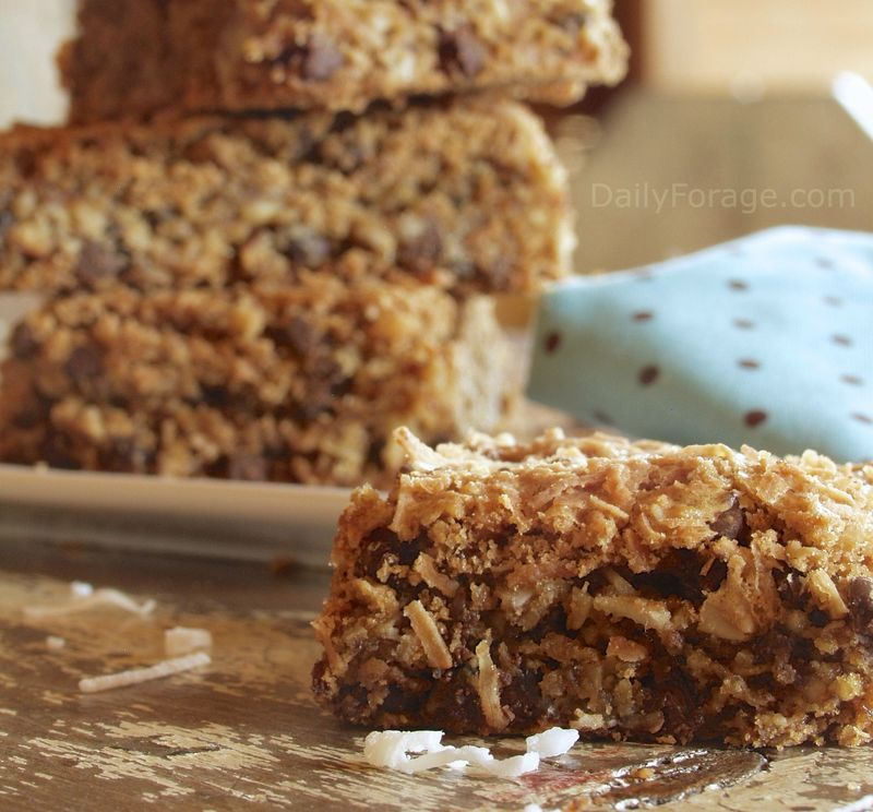 Coconut Pecan Chocolate Chip Bars | Daily Forage - Gluten Free