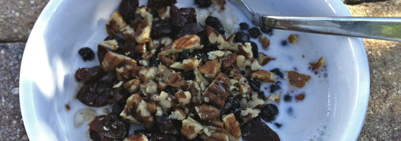 Creamy Steel Cut Oatmeal with Pecans and Dried Fruit Daily Forage - Gluten Free