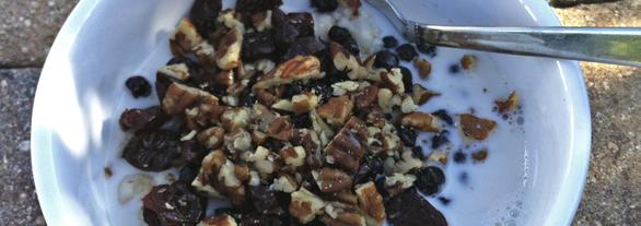 Cara Membuat Almond Milk Dengan Slow Juicer : Creamy Steel Cut Oatmeal with Pecans and Dried Fruit Daily Forage - Gluten Free