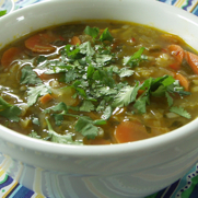 Gluten-free, Dairy-free Mexican Chicken Soup by DailyForage.com