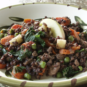 Beef, Black Rice, and Apple Medley