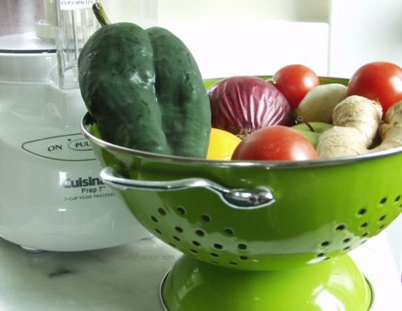 Meal Planning and Prep Tips by DailyForage.com