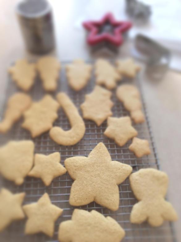 Dairy Free Christmas Cookies House Cookies