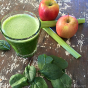 Apple Celery Spinach Green Spa Juice by DailyForage.com