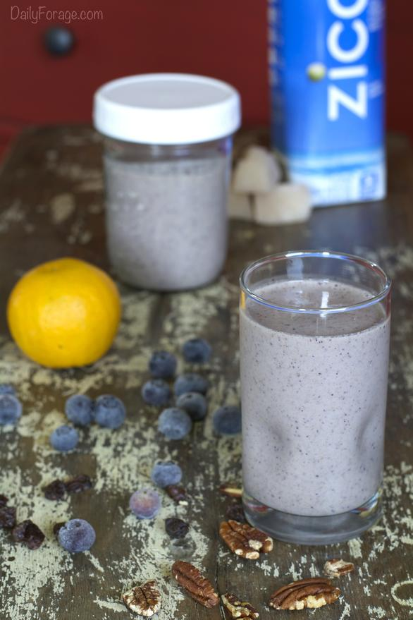 Gluten-free Dairy-free Blueberry Orange Coconut Protein Smoothie