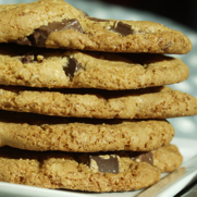 Gluten-free Dairy-free Almond Hazelnut Chocolate Chip Cookies