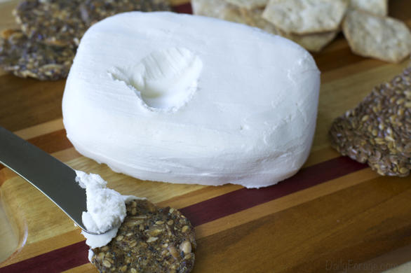 Homemade Dairy-free Coconut Milk Cream Cheese