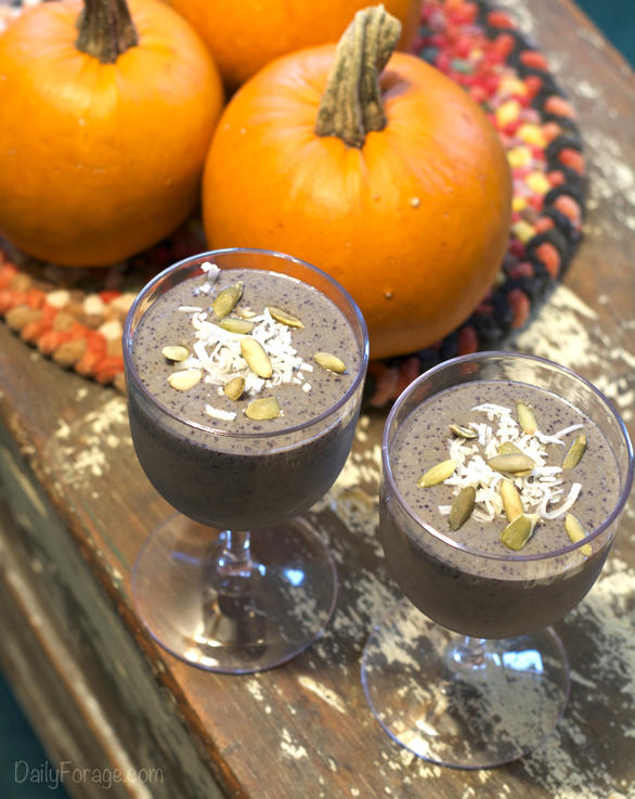 Gluten-free Dairy-free Blueberry Pumpkin Protein Smoothie