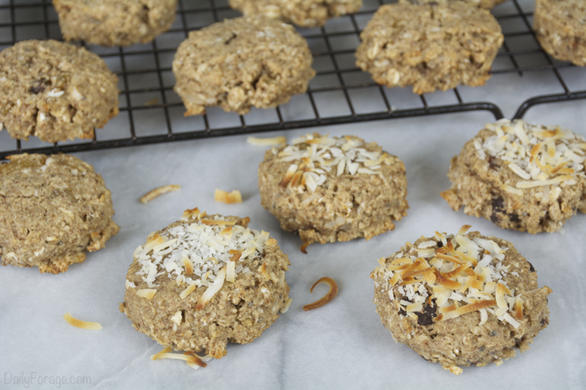 Gluten-free, Dairy-free Oatmeal Breakfast Cookies (Power Pucks)