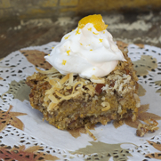 Gluten-free, Dairy-free, Oat-free Streusel Topped Pumpkin Bars by DailyForage.com