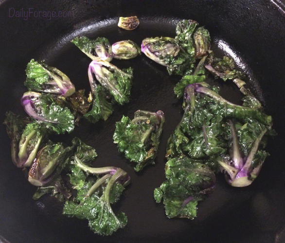Pan Seared Kale Sprouts, DailyForage.com