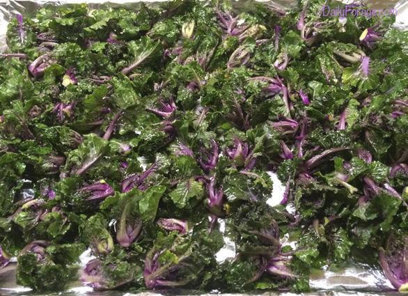 Raw, Oiled Kale Sprouts, DailyForage.com