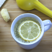 Naturally Gluten-free Lemon Ginger Tummy Tea by DailyForage.com