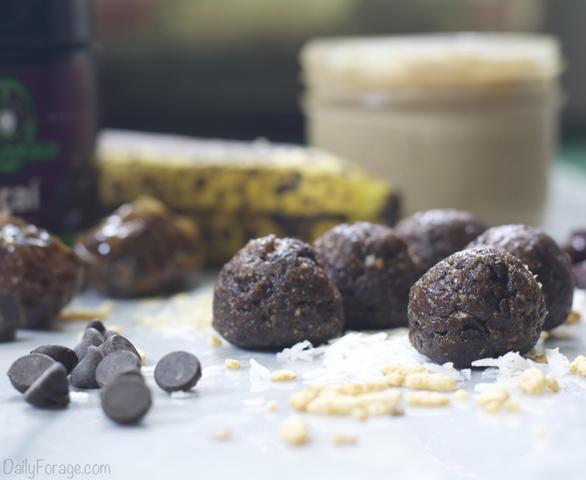 No-Bake Gluten-free, Dairy-free Cherry Chocolate Antioxidant Protein Balls, DailyForage.com