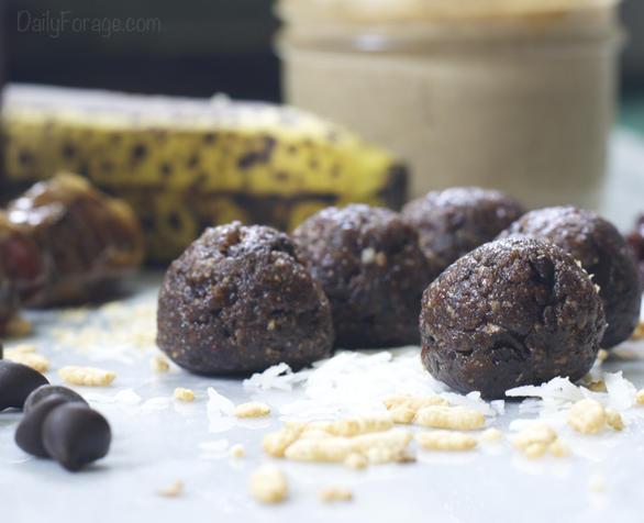 No-Bake Gluten-free, Dairy-free Cherry Chocolate Antioxidant Protein Energy Balls, DailyForage.com