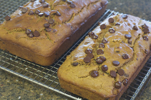 Lower Glycemic One Flour Gluten-free, Dairy-free Chocolate Chip Banana Bread by DailyForage.com