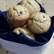 Chocolate Chip Banana Muffins with Psyllium Husk by DailyForage.com