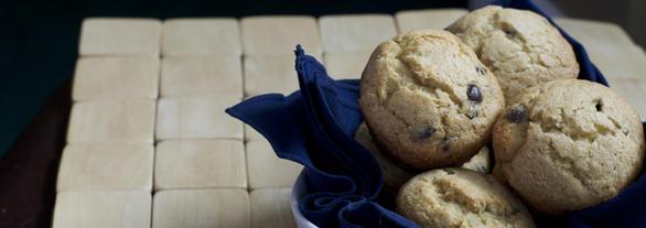 Chocolate Chip Banana Muffins Psyllium Husk by DailyForage.com