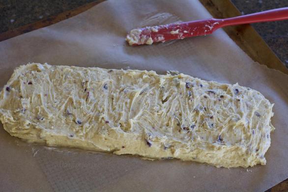 Daily Forage Cranberry Walnut Biscotti dough ready to bake.
