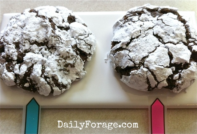 Will the Real Chocolate Crinkle Cookie Please Stand Up! Photo by DailyForage.com