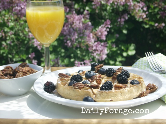 Mother's Day GFDF Waffles md pic