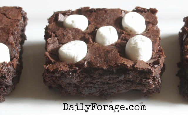 GFDF Double Chocolate Cocoa Brownies with Polka Dots 2 md pic