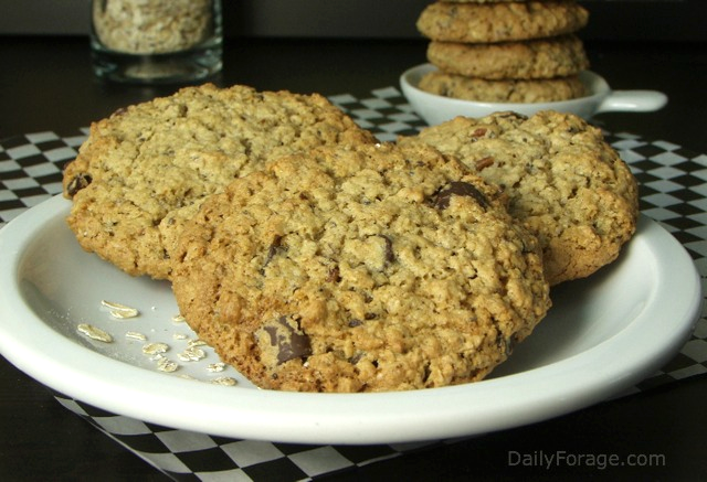 Fortified Oatmeal Cookies