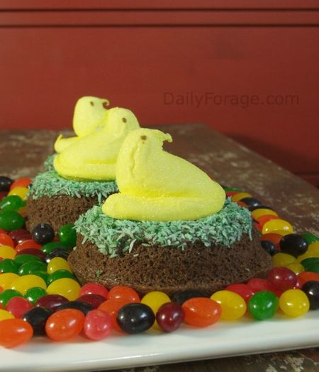 Easter Nests with Peeps, DailyForage.com