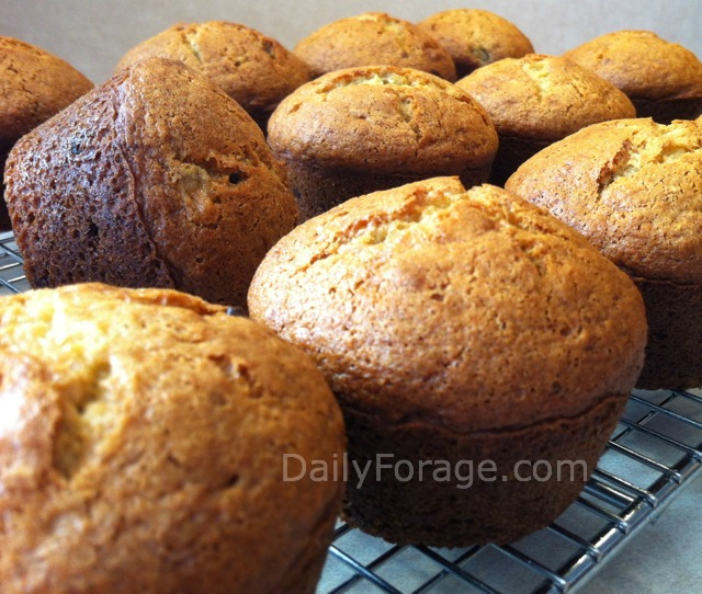 Chocolate Chip Banana Muffins Using Oil md pic